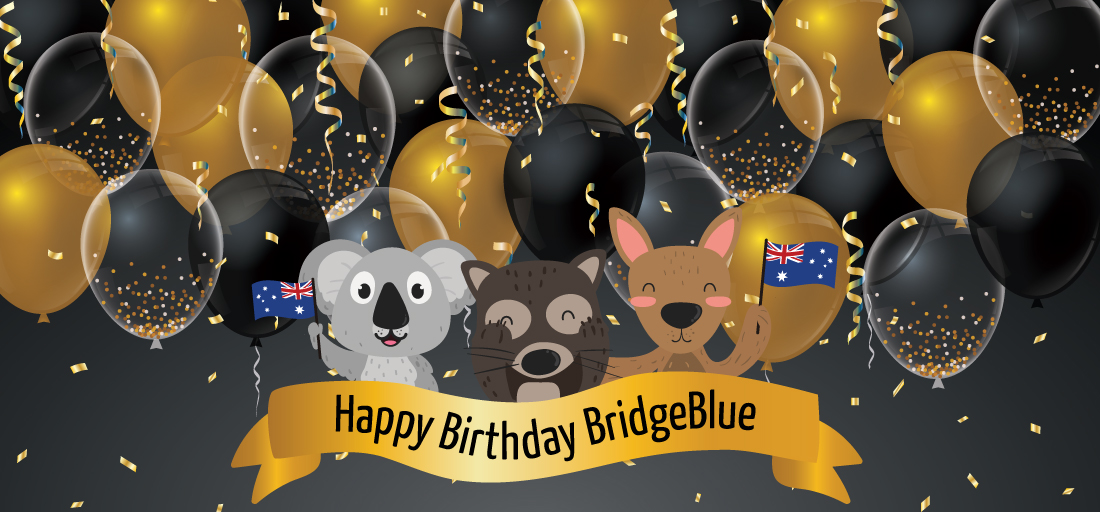 Bridge Blue Global Education 15 years Annniversary